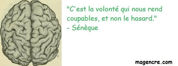 2019 02 10 Seneque