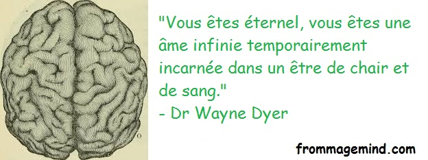 2019 02 20 Wayne Dyer