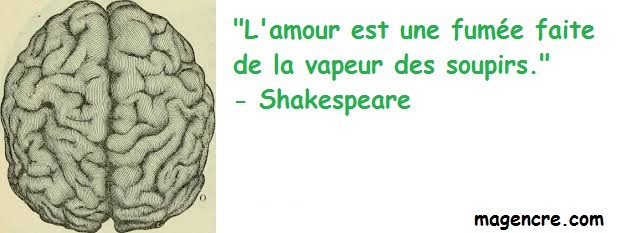 2019 04 04 Shakespeare 4