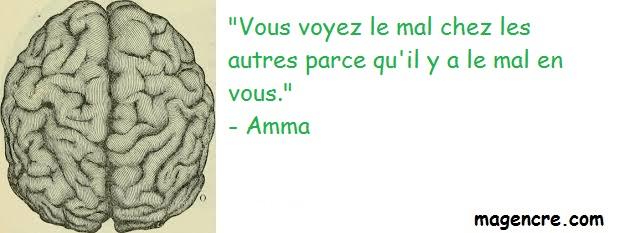 Amma 3