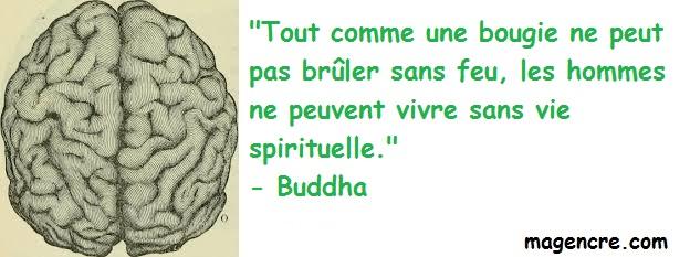 2020 01 30 Buddha 3