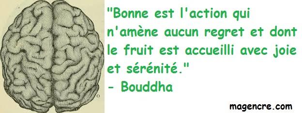 2020 04 15 Bouddha 11